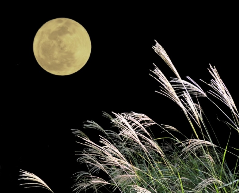 Enjoyment of the moon1
