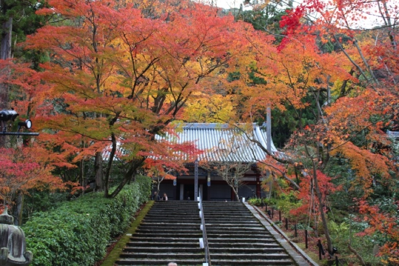 Kyoto autumn leaves7