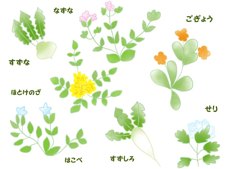 Seven autumnal flowers3