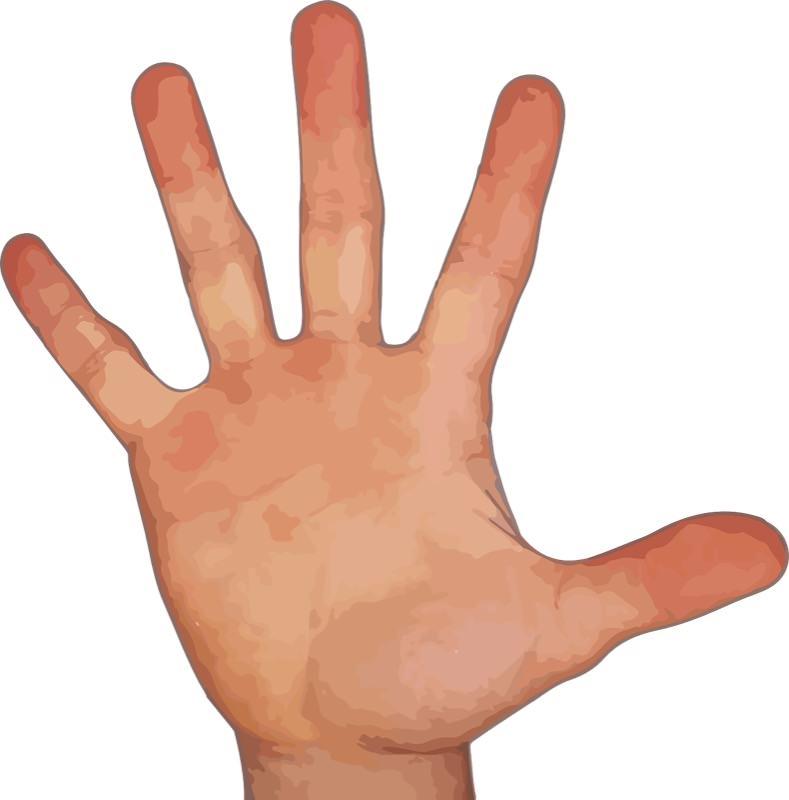 Index finger and ring finger1