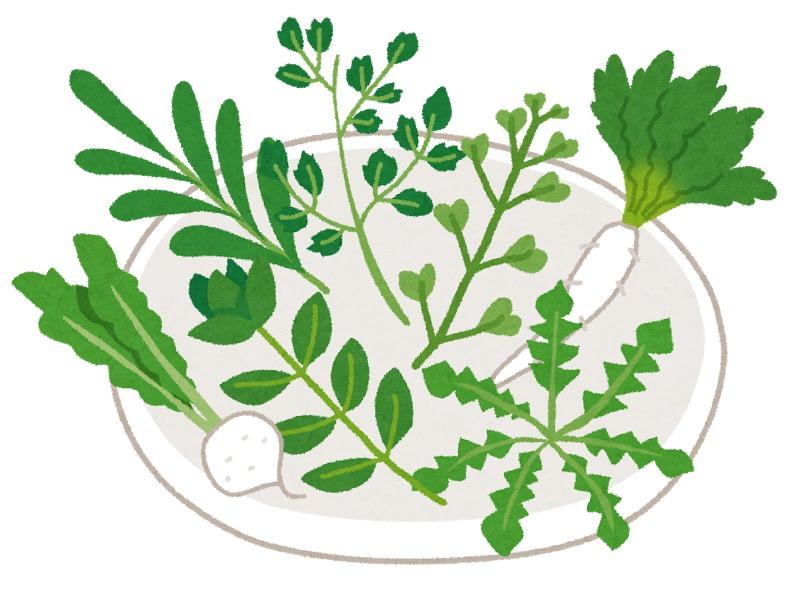 Rice porridge with seven spring herbs2